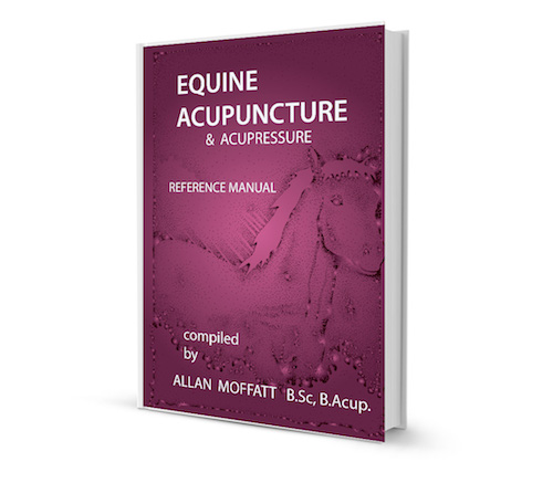 a manual of acupuncture book