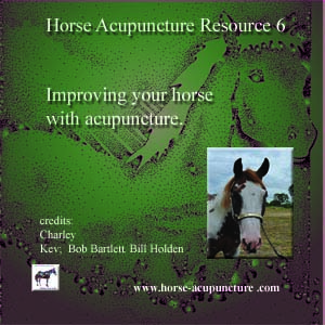 improving your horse with acupuncture